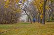 Autumn in Regina