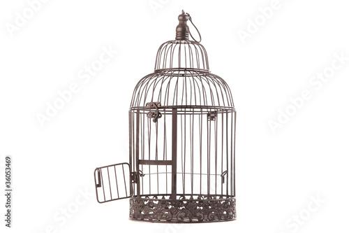 offener alter vogelk fig von distrikt3 lizenzfreies foto. Black Bedroom Furniture Sets. Home Design Ideas