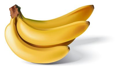 illustration of bananas
