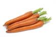 wet carrots