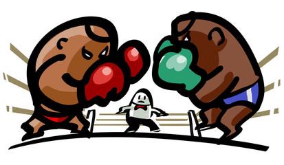 Heavyweight class boxing