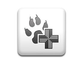 Boton cuadrado blanco simbolo veterinario