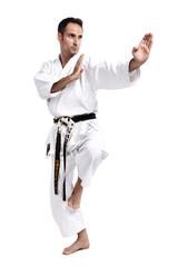Karate, Kata, vor weiß 2