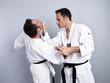 Karate vs Taekwondo, Partnertraining 01