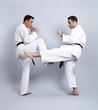 Karate vs Taekwondo, Partnertraining 07