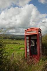 rural red telephone box overgrown, Lancashire