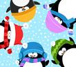 Penguins Celebrating Snow