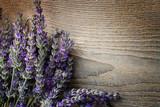 Fototapety Fresh lavender