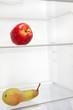frigo con mela & pera
