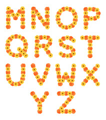 Set of alphabets created by daisy flowers.