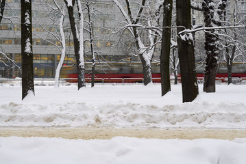 Tram rushing by trees in winter scene.