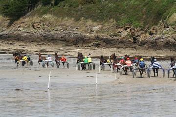 Trotteurs sur la plage