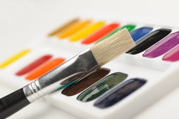 Brush with paints