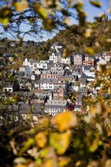 Blick durch Blätter auf Häuser in Idar-Oberstein