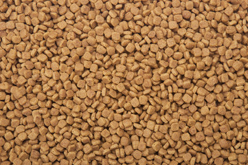 Dry pets food background