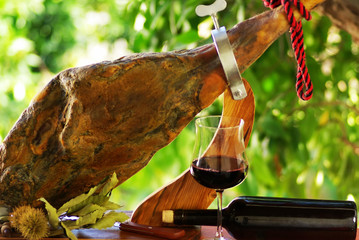 .Jamon of spain and red wine.