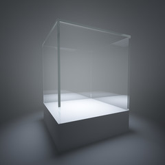 Illuminated empty glass showcase