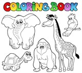 Coloring book tropical animals 2