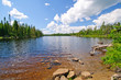 Summertime in the North Woods - 36145619