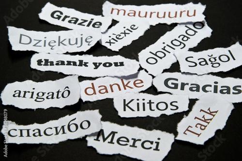 Danke in mehrerern Sprachen