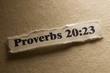 Proverbs 20:23