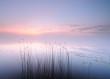 Fototapeten,sonnenaufgang,frühe,morgens,see