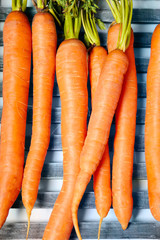 Young carrots