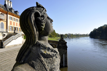 Schloss Pillnitz an der Elbe - Sphinx
