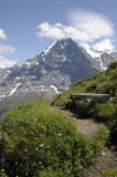 Bench on Mannlichen path with Eiger