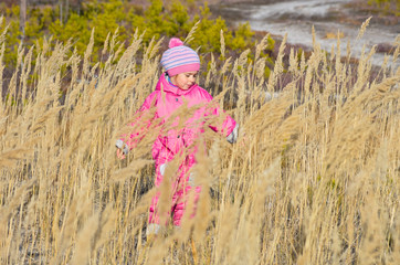 A little girl walks around the forest in the tall grass.