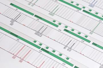 DNA Profil - genetischer Fingerabdruck