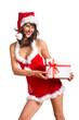 Weihnachtsfrau in Dessous mit Weihnachtsgeschenk