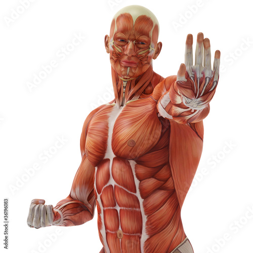 muscle man karate pose close up