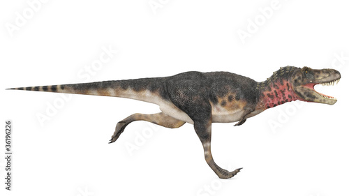 tarbosaurus runing side view