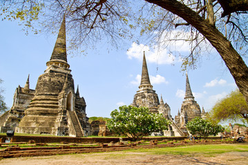 Thailand Pagoda in Ayuthaya