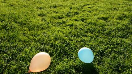 various balloons flight in evening light and  green grass field