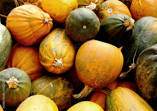 pumpkins detail