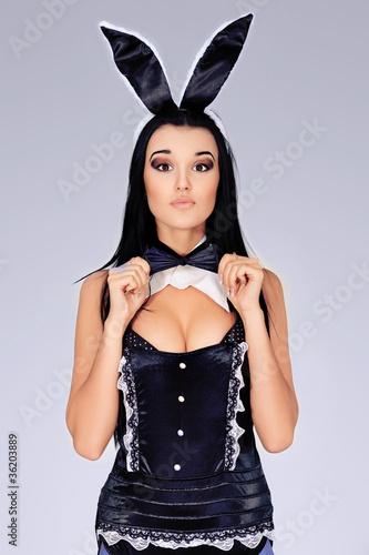 Leinwanddruck Bild rabbit