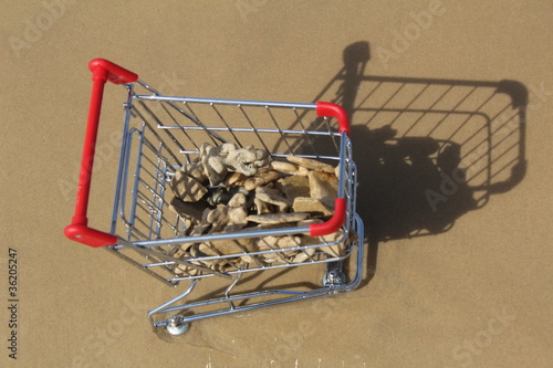 Retail cart stuck at sea with stones inside