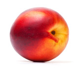 Single nectarine