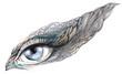 abstract human eye