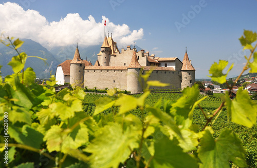 Chateau d'Aigle, Switzerland