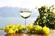 Wineglass and bunch of grapes. Lavaux region, Switzerland