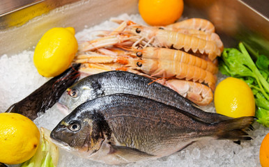 Seabass on cooled market display