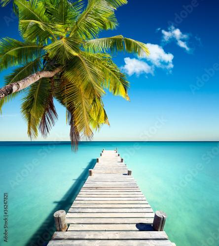plazowy-kokos