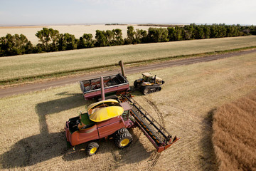Harvester with Grain Cart