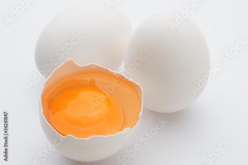 卵蛋纲图解动态图