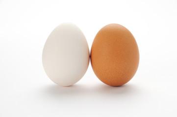 2種類の卵