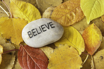 Believe Rock with Fall Leaves
