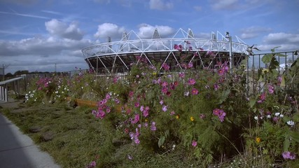 Olympic Video View 1